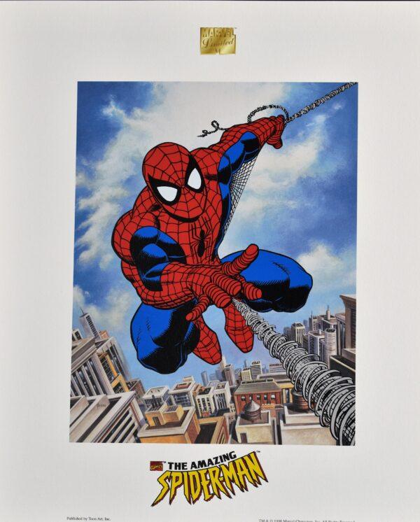 Marvel Spider D