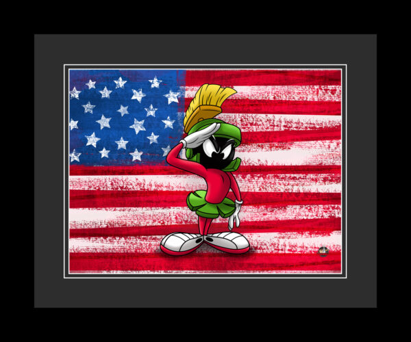 wb-flag-marvin-16×20-FRAMED